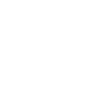 Review and Evaluation